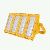 LDXEFL01T系列防爆泛光灯具