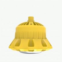 LDXEFD01B系列防爆平台灯具