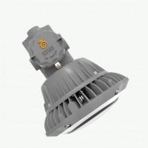 LDXEFD01A系列防爆平台灯具